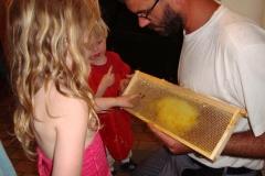 Honig machen beim Bienenjan